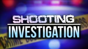 Shooting Investigation