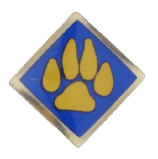 Cub Scout Pin Recall Pic