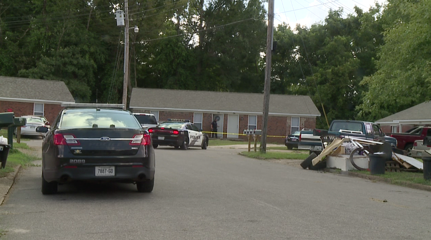 The Jackson Police Department is investigating a domestic related homicide in South Jackson.