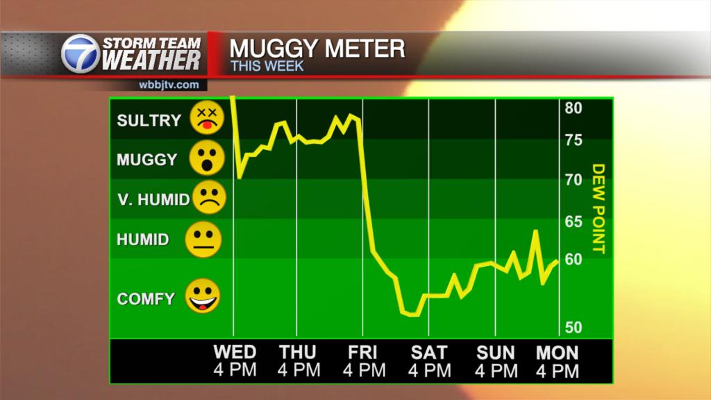 Muggy Meter 1607543012179